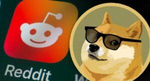 reddit doge